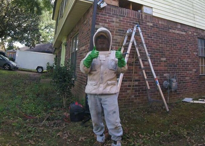 man in bee clothes